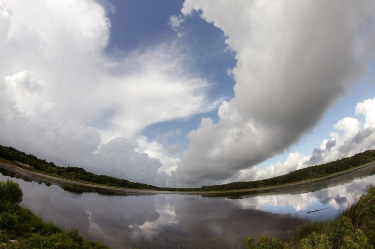 Fisheye View of the Marsh Pond