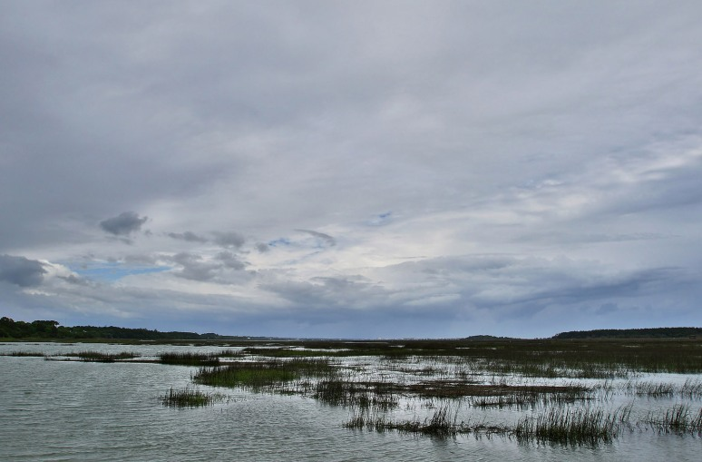 Stormy Day at the Marsh
