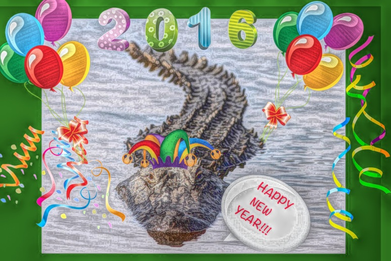 Happy New Year Alligator