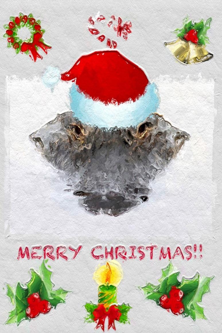merry-christmas-alligator